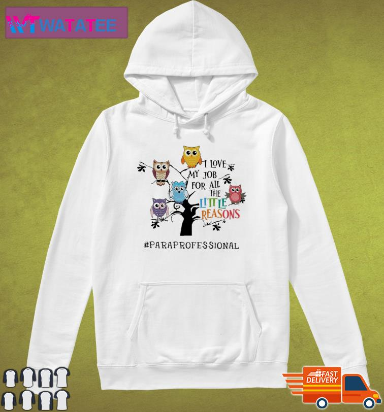 Owls I Love My Job For All The Little Reasons Paraprofessional Shirt Hoodie