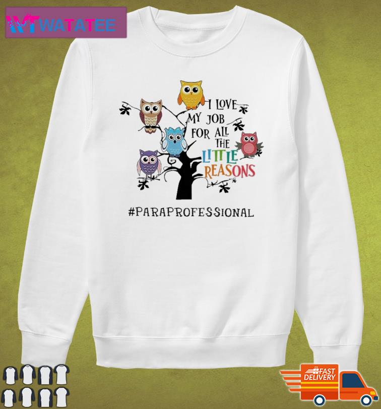 Owls I Love My Job For All The Little Reasons Paraprofessional Shirt Sweater